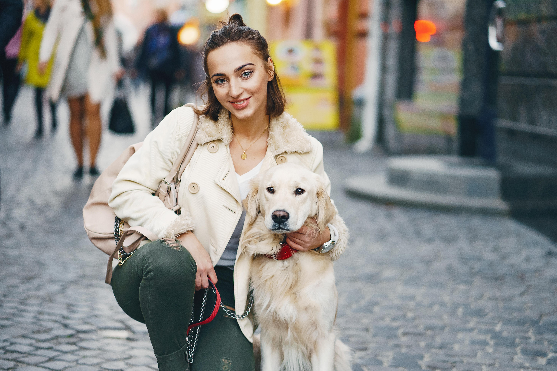zwiedzanie Polski z psem