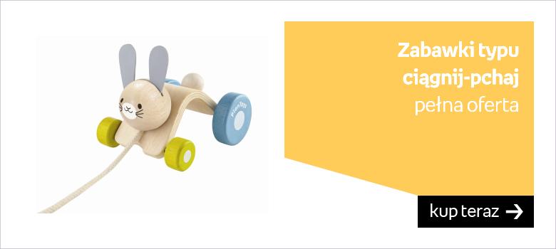 Zabawki ciągnij-pchaj