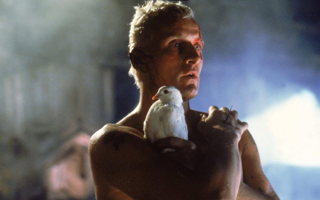Kadr z filmu Blade Runner (1982)
