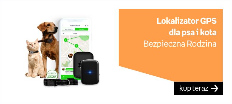 lokalizator GPS dla psa kota