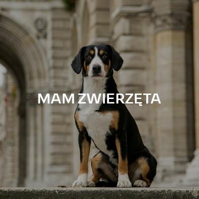 MAM ZWIERZĘTA